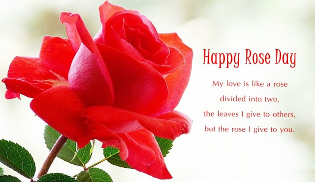 Happy Rose Day 2018 HD Images
