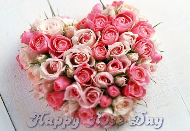 Happy Rose Day Photos Download