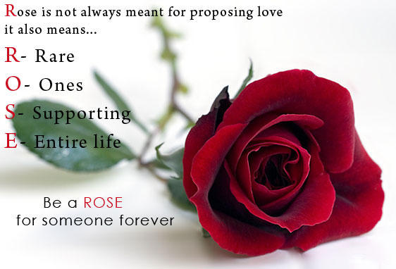 Happy Rose Day SMS for Girlfriend in Hindi