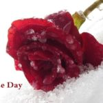 Happy Valentines Day Ideas for Teenagers Couples
